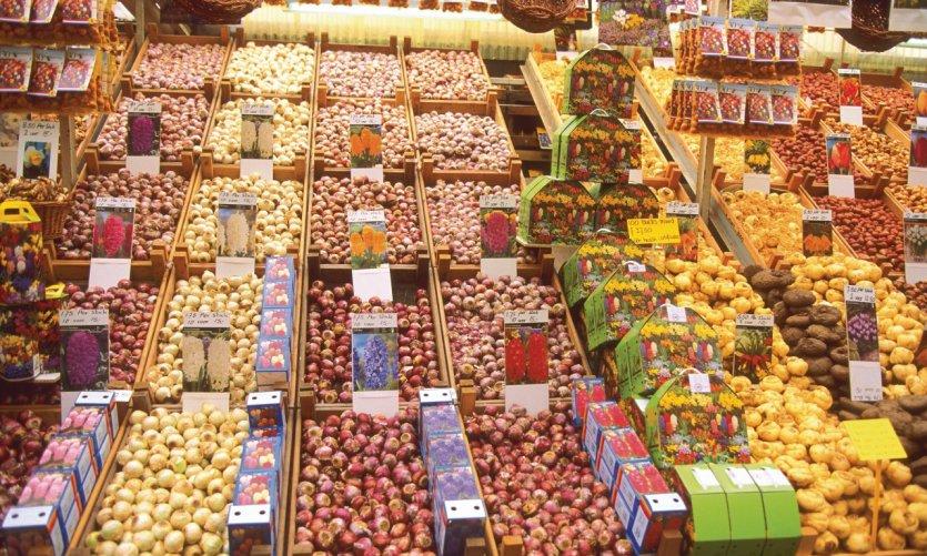 Bloemenmarkt est LE marché aux fleurs d'Amsterdam.
