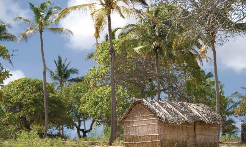 Habitat traditionnel du Mozambique.