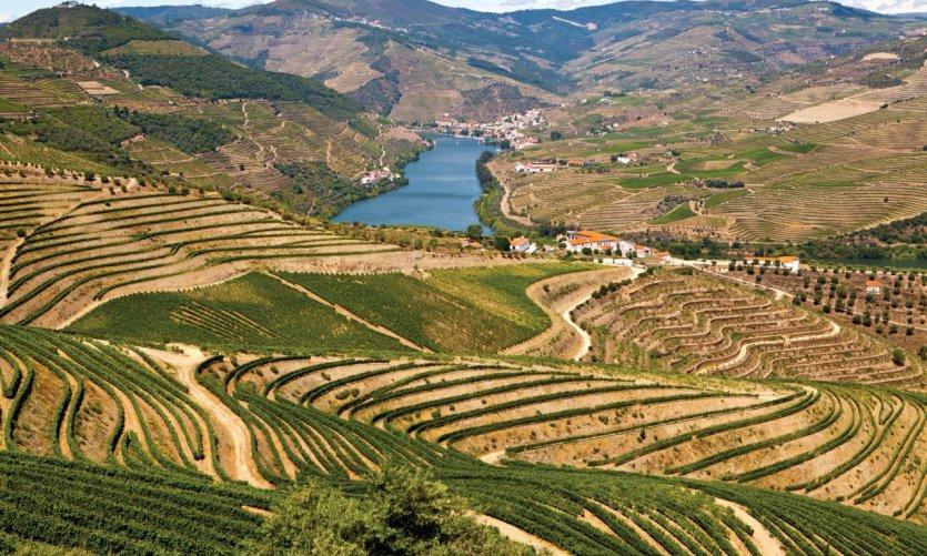 La vallée du Douro, près de Pinhão.