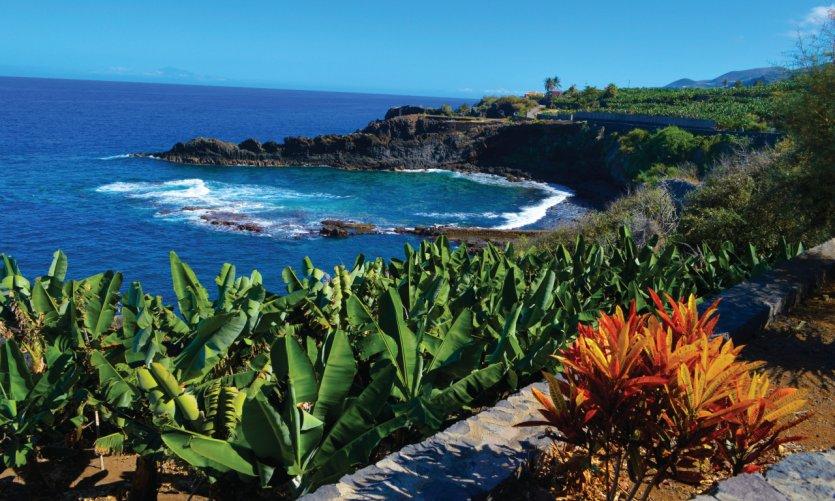 Sur la côte Est, bananeraies, roches et océan, du côté de Charco Azul.