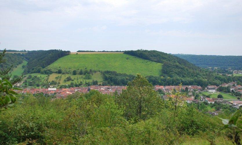 Thonnance-lès-Joinville.