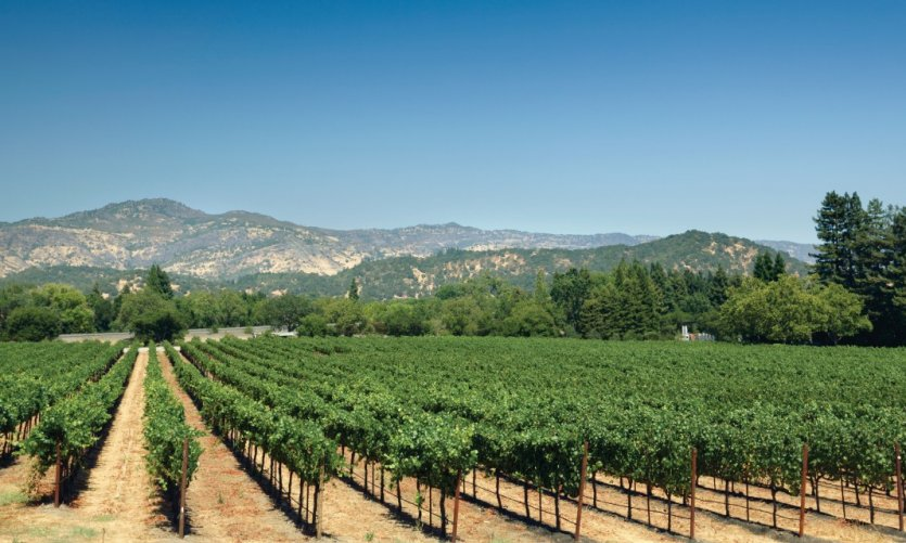 <p>Yountville.</p>