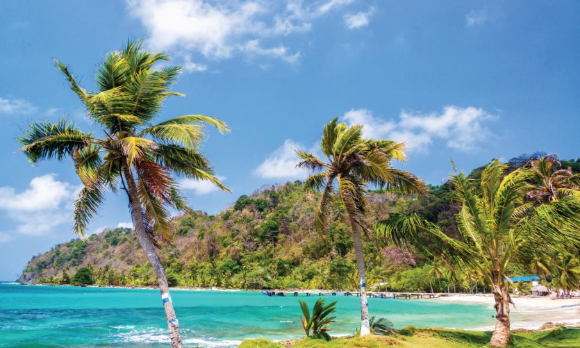 Mer des Caraïbes depuis La Miel.
