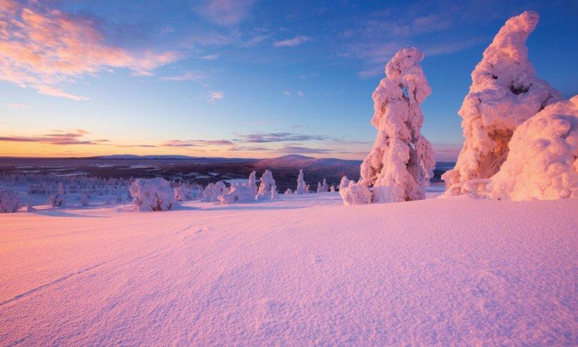 Paysage enneigé de la Laponie finlandaise, Kittilä.