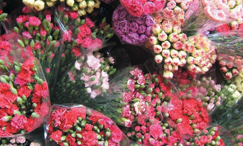 oeillets dans le marché aux fleurs de Mong Kok.