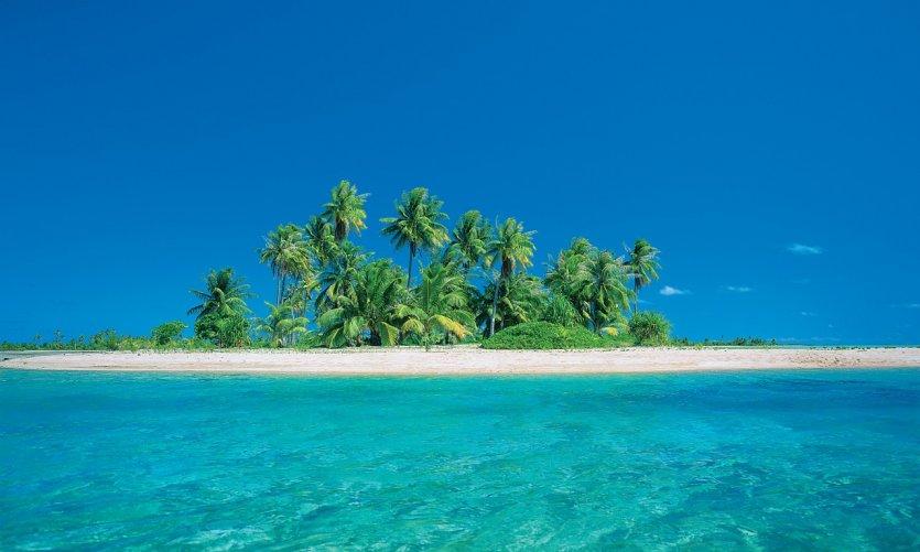 Motu, île déserte plantée de cocotiers.