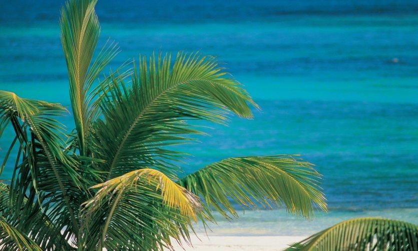 Akumal, petit paradis mexicain.