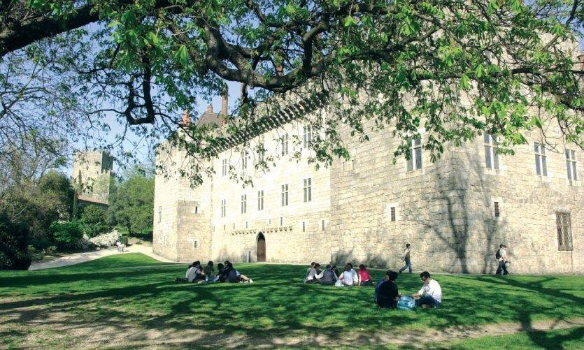 <p>Castillo y Palacio</p>
