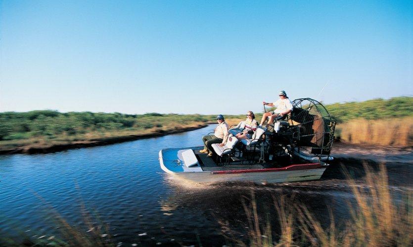 Dans les marais de l'Everglades National Park.