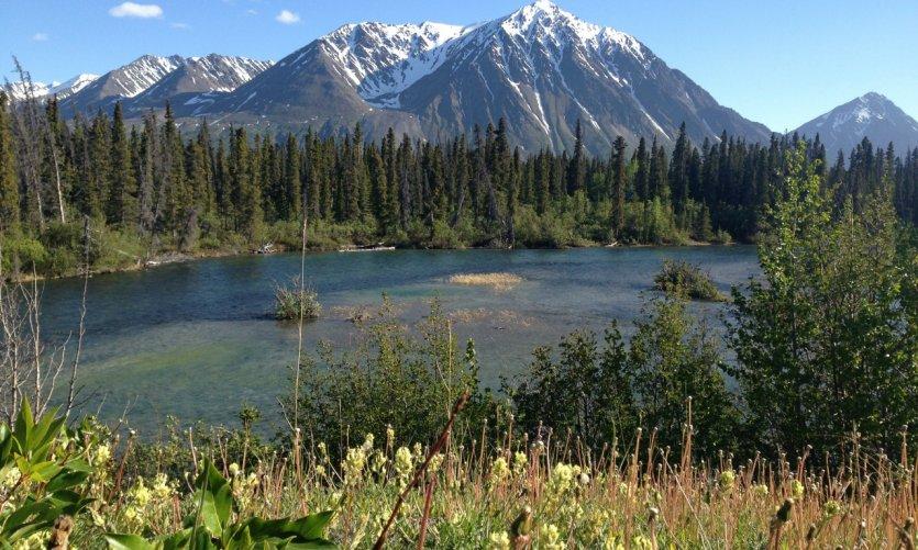 Rivière et montagnes au printemps.