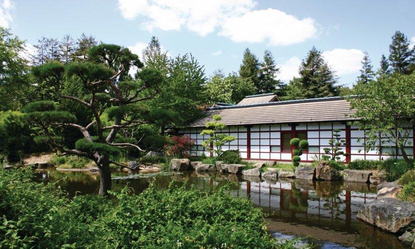 Le jardin japonais de l'île de Versailles