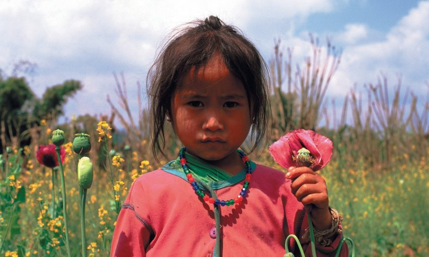 Jeune Laotienne dans un champ de pavot, province de Xieng Khuang.