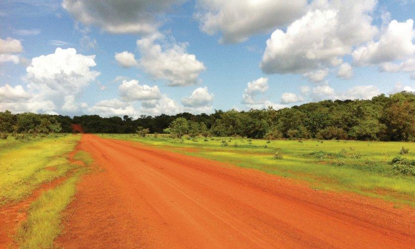 Brousse, piste reliant Kedougou à Salemata (début saison des pluies).