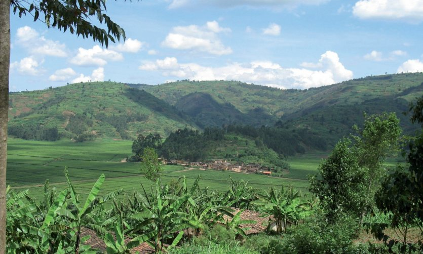 Région de Kinihira.