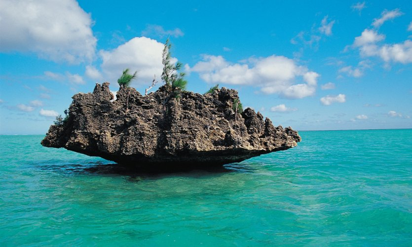 La Roche corail.