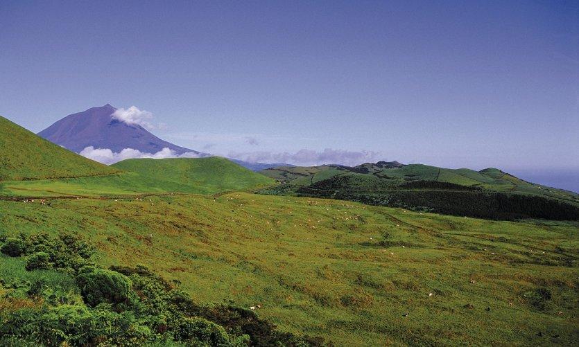 Paisaje de la isla de Pico.