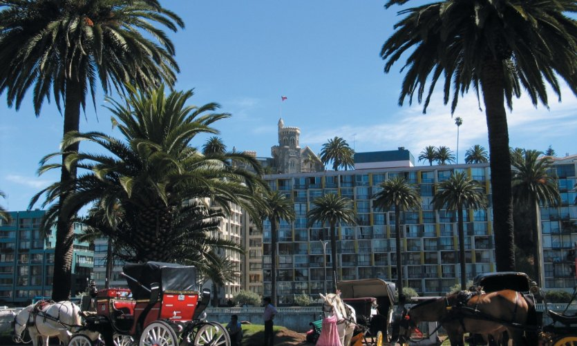 Horse-drawn carriages in Viña del Mar