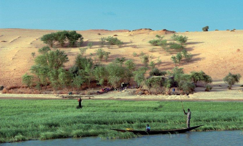 Entre Tombouctou et Gao, les dunes plongent dans le lit fertile du fleuve