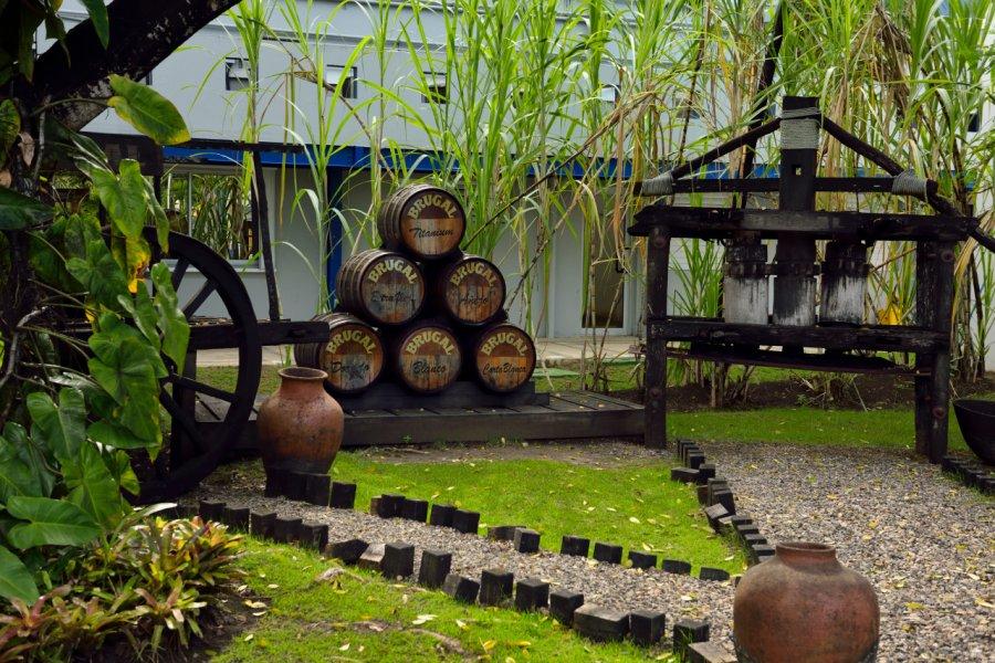 Distillerie Brugal. (© Reimar - Shutterstock.com))