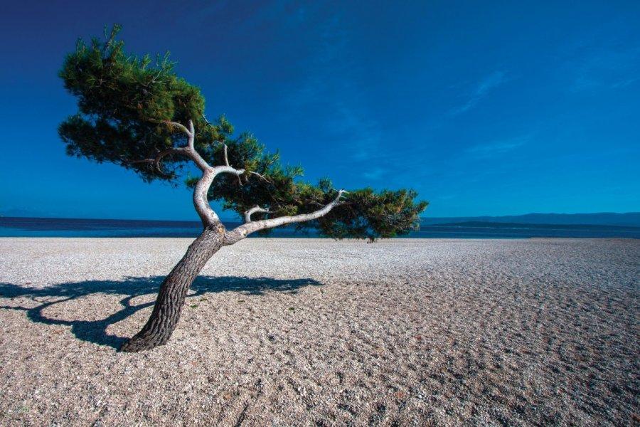 Plage déserte de laCorne d'orà Bol sur l'île de Brač. (© Mario Jelavic))