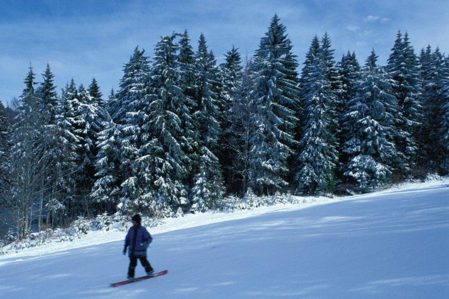 Sports d'hiver (© PIERRE DELAGUÉRARD - ICONOTEC))