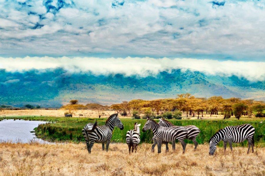 Autour du cratère de NGorongoro. (© chuvipro))