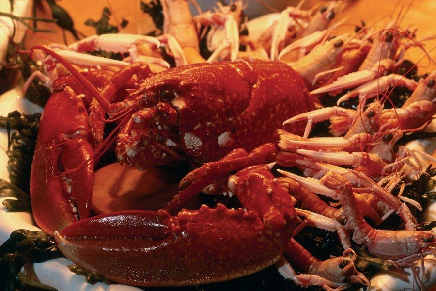 Assiette de crustacés. (© TONY CARDWELL - ICONOTEC))