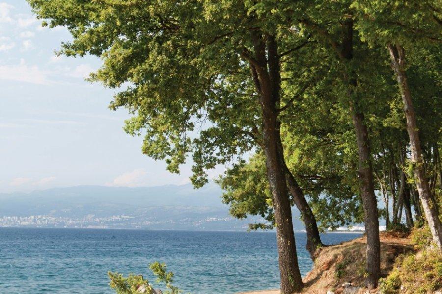 Le long de la côte de Njivice, côte ouest de Krk. (© Matej Vuga - iStockphoto))