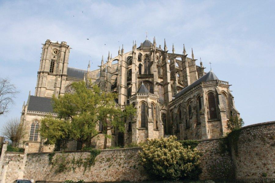 La cathédrale Saint-Julien (© Lesavantfou - Fotolia))