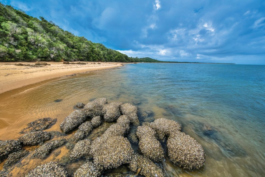 Plage sur Ilha Da Inhaca. (© wildacad))