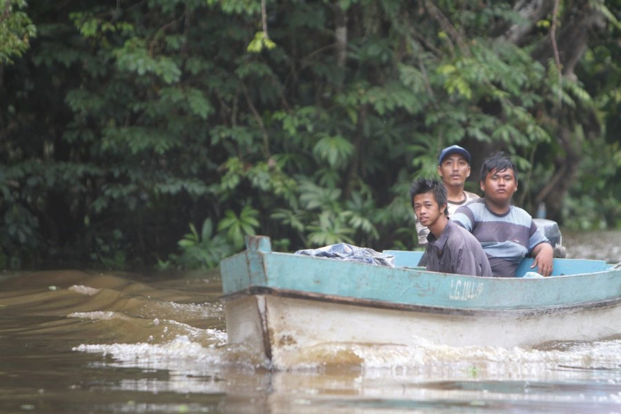Navigation sur la rivière Kinabatangan (© Stéphan SZEREMETA))