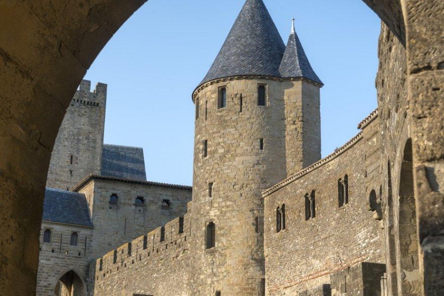 Cité médiévale de Carcassonne. (© Claudio Giovanni Colombo - Shutterstock.com))