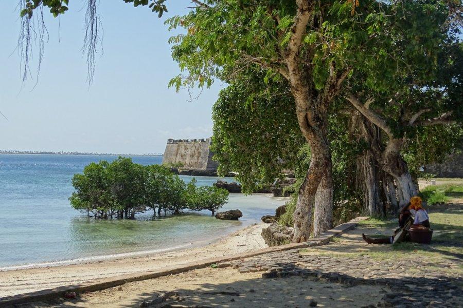 Ilha de Moçambique et sa forteresse. (© Elisa Vallon))