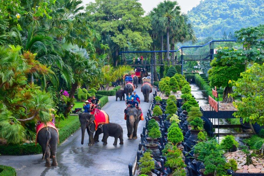 Balade à os d'éléphants dans le Nong Nooch Tropical Garden. (© Santi.m - Shutterstock.com))