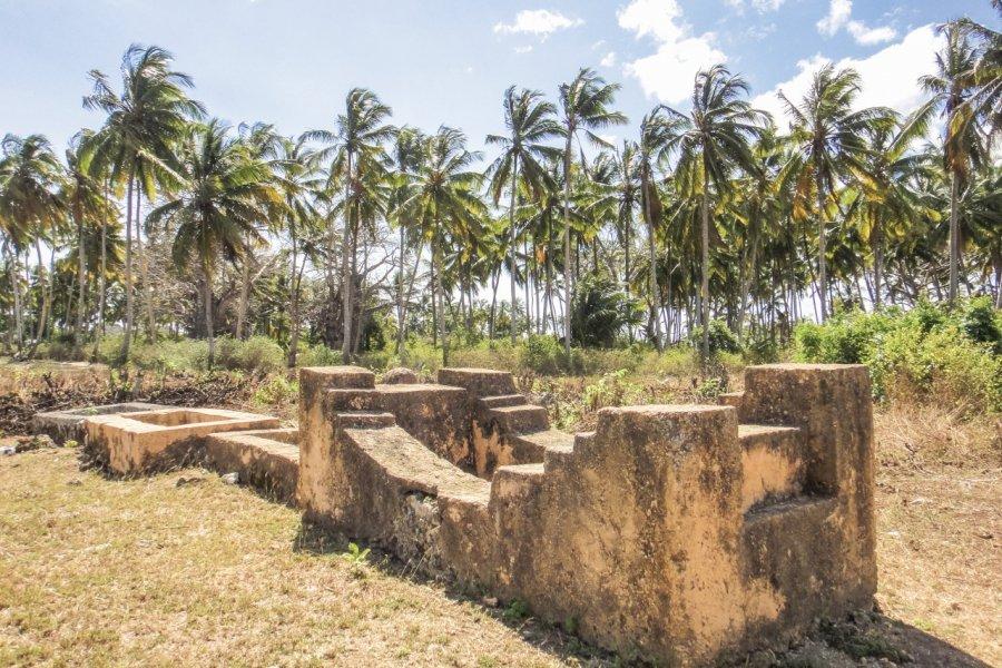 Les vestiges de la mosquée de Kizimkazi. (© AlexanderXXI))