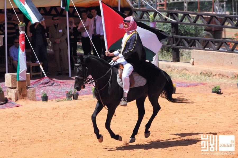 Horse-club des purs-sang arabes. (© Visit Jordan))