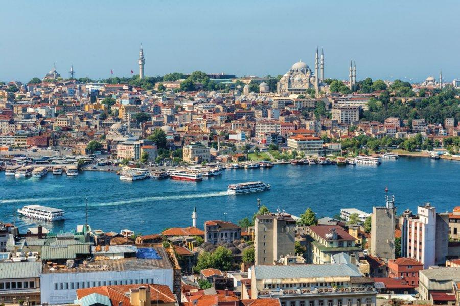 La ville d'Istanbul. (© Vincent_St_Thomas))