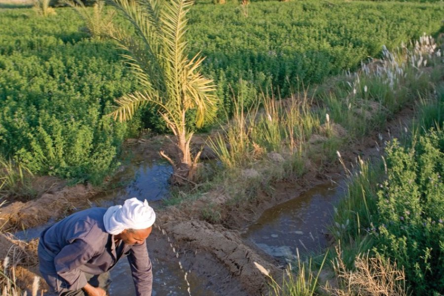 Paysan au travail sur un canal d'irrigation d'eau. (© Sylvain GRANDADAM))