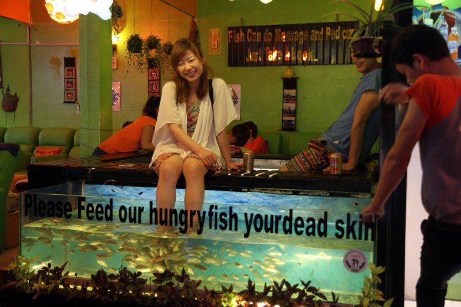Séance de fish pédicure à Siem Reap. (© Stéphan Szeremeta))