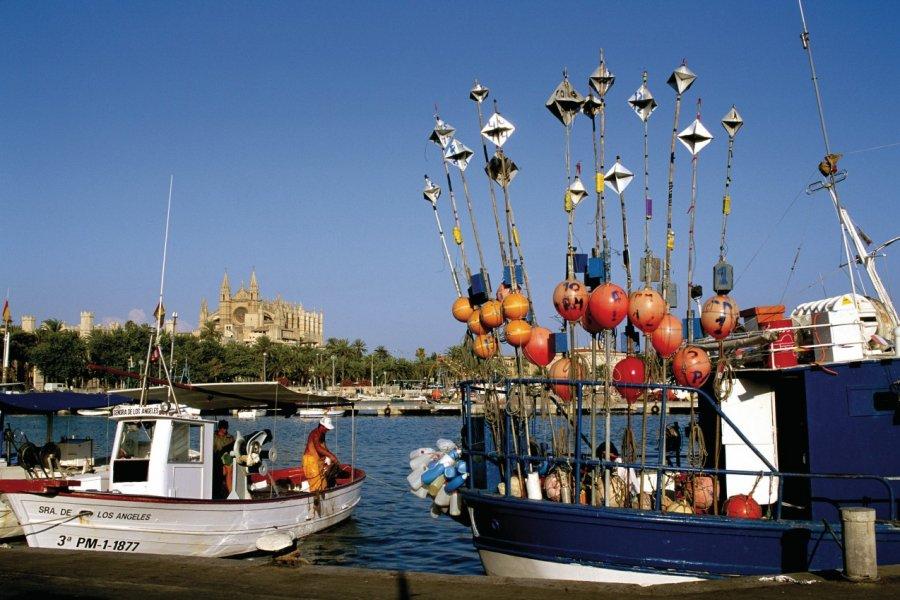 Bateaux de pêche dans le port de Palma de Majorque. (© Author's Image))