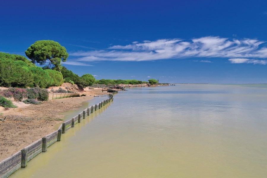 Parque nacional de Doñana. (© StockPhotoAstur - iStockphoto))