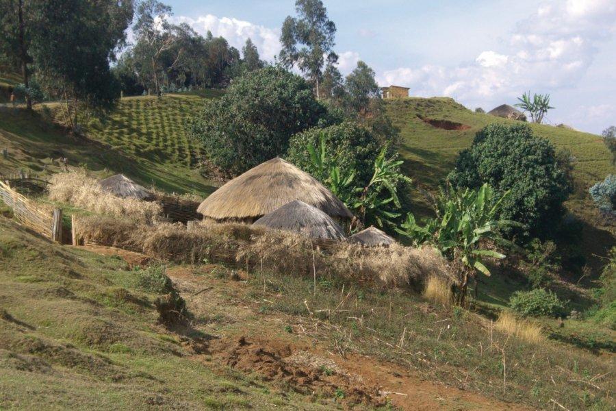 Un rugo typique dans le Mugamba. (© Christine DESLAURIER))