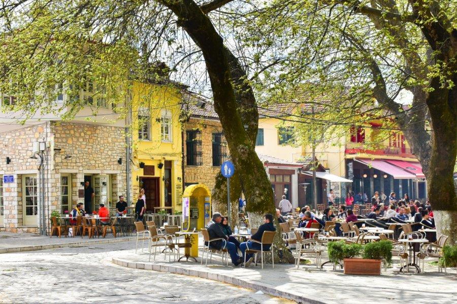 La ville de Ioannina. (© Calin Stan))