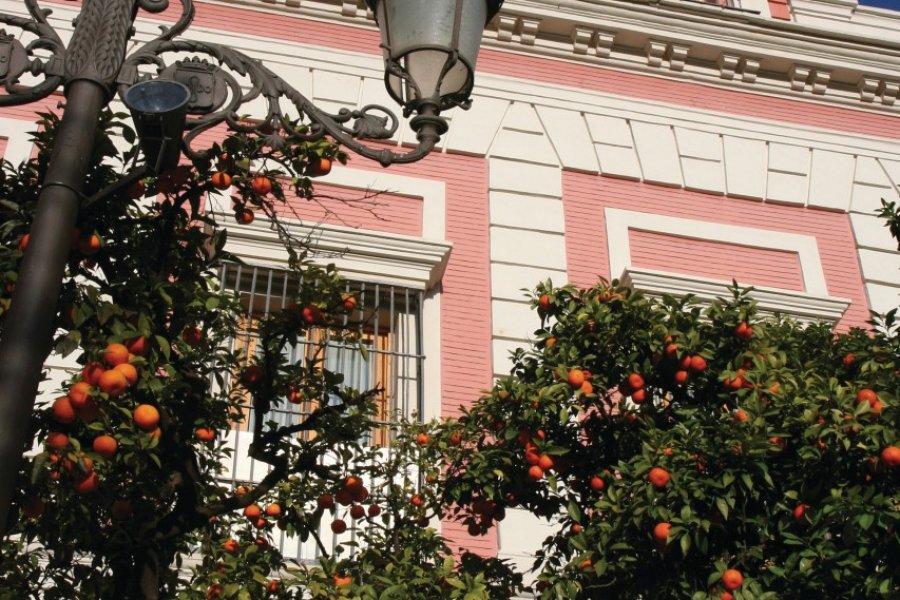 Plaza del Triunfo, Casa de la Provincia de Sevilla. (© Stéphan SZEREMETA))