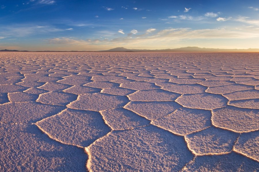Salar de Uyuni. (© David Krijgsman / Shutterstock.com))