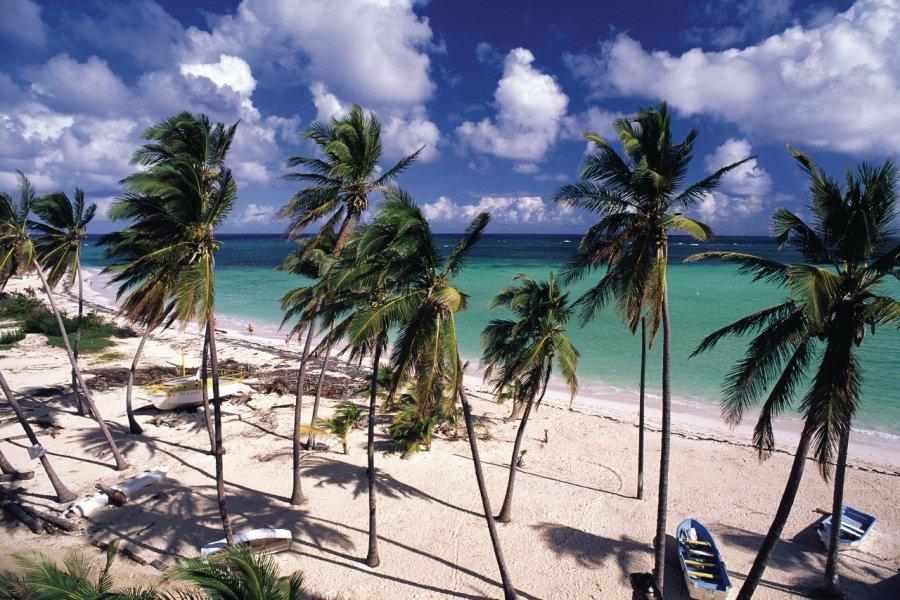 Plage de la Martinique. (© Author's Image))