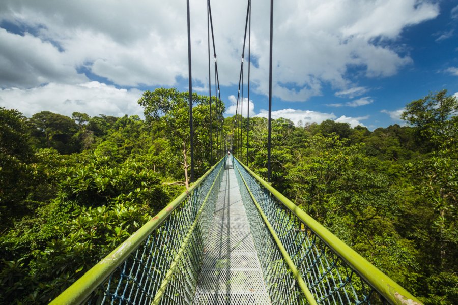 La Tree Top Walk propose une balade à la cîme des arbres, Macritchie Reservoir. (© Filipe.Lopes - Shutterstock.com))