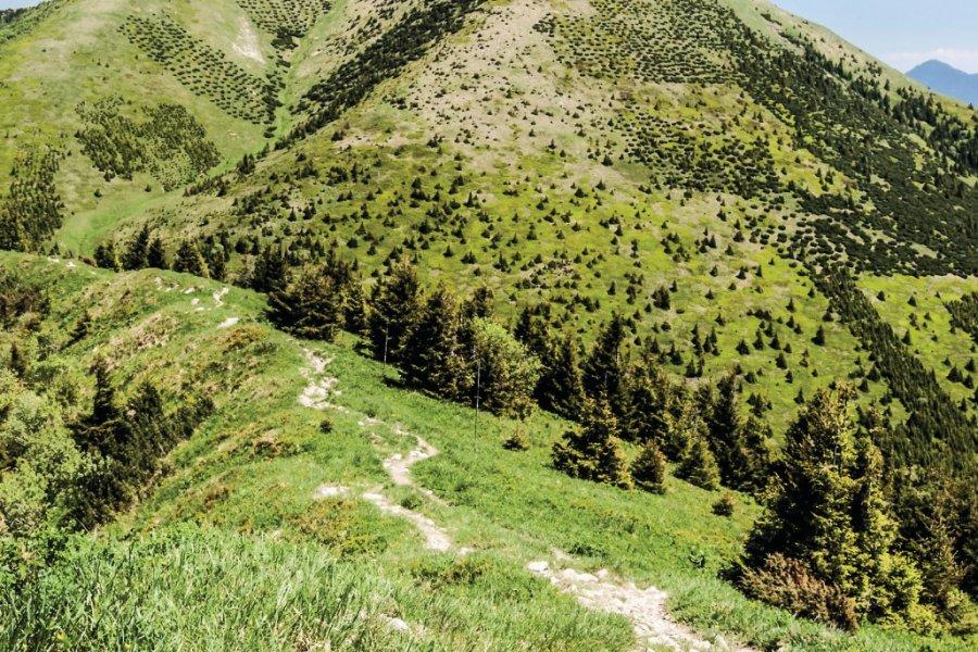 Les collines de Malá Fatra. (© honza28683))