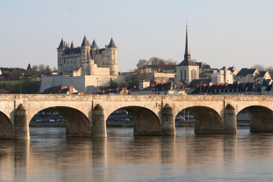 Saumur et son château (© JEANPHILIPPE DELISLE - FOTOLIA))