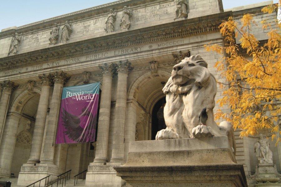 L'un des deux lions majestueux gardant la New York Public Library. (© PHOTOS.COM))